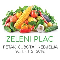 zeleniPLAC29-1-200